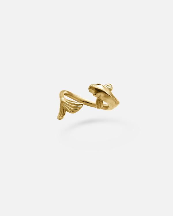 Золотая рыбка карп на фалангу